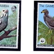 Sellos: GAMBIA - TEMATICA AVES - SERIE COMPLETA NUEVA - 4 VALORES - ABUKO NATURE RESERVE II. Lote 231134155