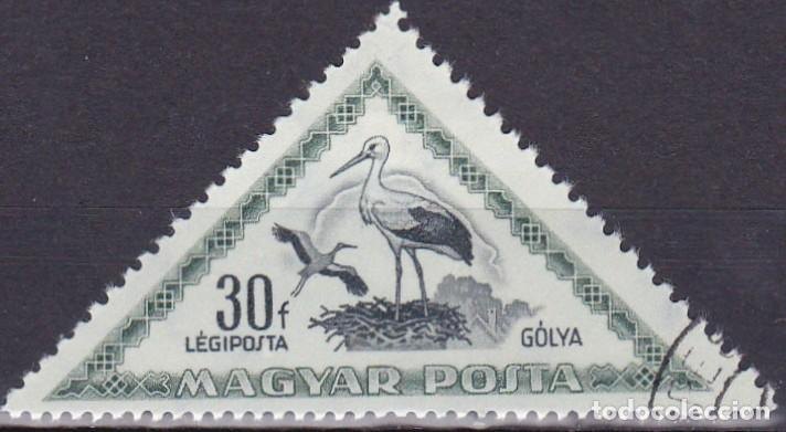1952 - HUNGRIA - AVES - CIGÜEÑA - CORREO AEREO - YVERT 120 (Sellos - Temáticas - Aves)