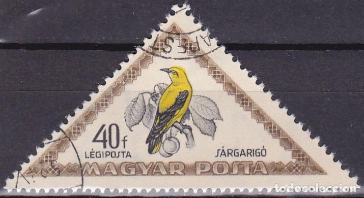 1952 - HUNGRIA - AVES - MIRLO AMARILLO - CORREO AEREO - YVERT 121 (Sellos - Temáticas - Aves)