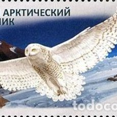 Sellos: RUSSIA 2018 RCC JOINT ISSUE - RESERVES MNH - OWLS. Lote 241503570