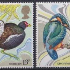 Sellos: F-EX22639 ENGLAND UK UNITED KINGDOM 1980 MNH BIRD AVES PAJAROS OISEAUX VÖGEL.. Lote 244622390