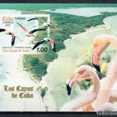 Sellos: ⚡ DISCOUNT CUBA 2007 ISLANDS AND WILDLIFE MNH - BIRDS. Lote 255624785