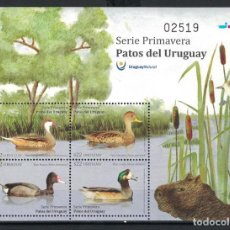 Sellos: ⚡ DISCOUNT URUGUAY 2018 DUCKS FROM URUGUAY MNH - BIRDS, DUCKS. Lote 255655820