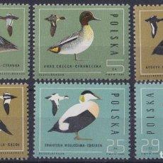 Sellos: F-EX26307 POLAND POLSKA POLONIA MNH 1985 BIRD AVES PAJAROS OISEAX VÖGEL.. Lote 270229808
