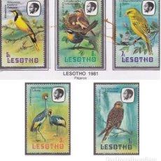 Sellos: LOTE DE SELLOS NUEVOS DE LESOTHO 1981 - AVES - FAUNA - PAJAROS AHORRA EN EL ENVIO Y COMPRA MAS. Lote 282006198