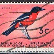 Sellos: SUDAFRICA Nº 305, BUBÚ PECHIRROJO, USADO. Lote 288399408