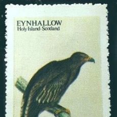 Sellos: SCOTLAND : EYNHALLOW - 1973 - GOLDEN EAGLE - ANIMALES (FAUNA) | AVES. Lote 289449183