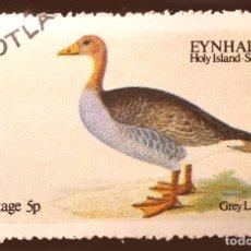 Sellos: SCOTLAND : EYNHALLOW - 1973 - GREY LAG GOOSE - ANIMALES (FAUNA) | AVES. Lote 289449298