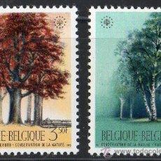 Sellos: BÉLGICA AÑO 1970 YV 1526/27*** AÑO EUROPEO PROTECCIÓN DE NATURALEZA - ÁRBOLES - FLORA. Lote 22672182