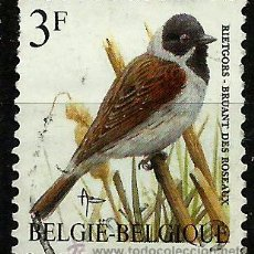 Sellos: BELGICA 1991- YV 2425. Lote 172794838