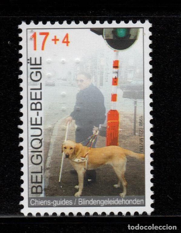BELGICA 2789** - AÑO 1998 - SOLIRADIDAD - PERROS GUIAS (Sellos - Extranjero - Europa - Bélgica)