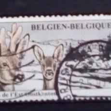 Sellos: BÈLGICA CIERVOS SELLO USADO. Lote 195273026