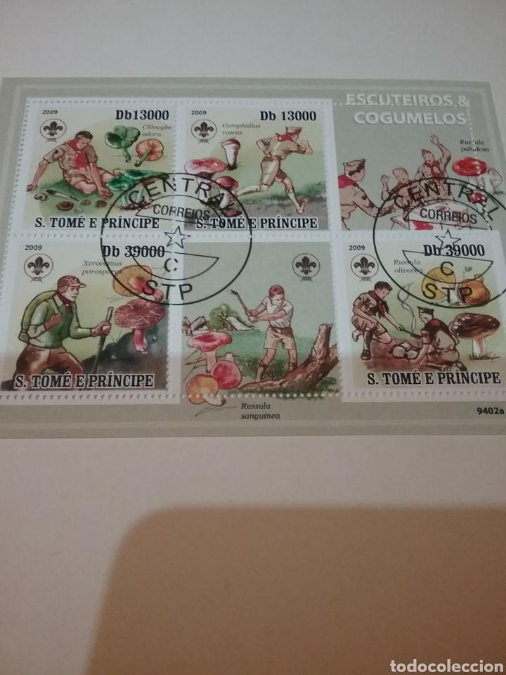 HB S. TOME Y PRINCIPE MTDOS/2009/BOY SCOUTS/HONGOS/SETAS/PLANTAS/JOVENES/FLORA (Sellos - Temáticas - Boy Scout)