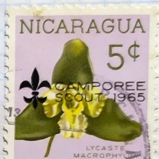 Sellos: NICARAGUA SELLOS FLORES CAMPOREE SCOUT 1965 LYCASTE MACROPHYLION. Lote 203032987