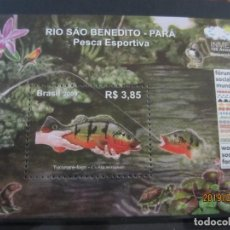 Sellos: BRASIL - 2009 1 HB. NUEVO. Lote 163593422