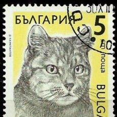 Sellos: BULGARIA 1989- YV 3287. Lote 103160136
