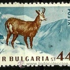 Stamps - BULGARIA 1958- YV 0924 - 52426717