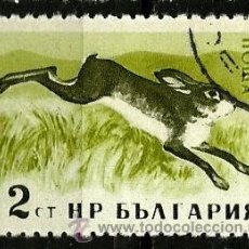 Stamps - BULGARIA 1958- YV 0921 - 52426753