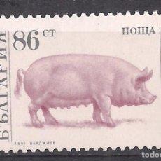 Sellos: BULGARIA 1991 - NUEVO. Lote 103561987