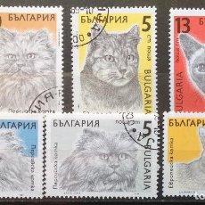 Sellos: BULGARIA SELLOS USADOS DE 1989 GATOS SERIE COMPLETA. Lote 144625314