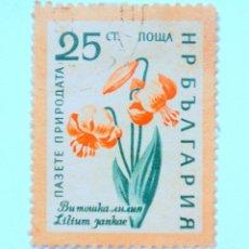 Sellos: SELLO POSTAL BULGARIA 1960, 25 CT, CARNEOLA LILY , USADO. Lote 149911566