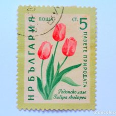 Sellos: SELLO POSTAL BULGARIA 1960, 5 CT, TULIPAN, USADO. Lote 149912030