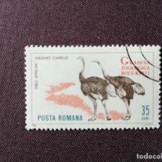 Sellos: RUMANIA - VALOR FACIAL 35 BANI - AÑO 1964 - ZOOLÓGICO BUCAREST - FAUNA: AVESTRUZ AFRICANA - CON GOMA. Lote 204481025