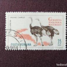 Sellos: RUMANIA - VALOR FACIAL 35 BANI - AÑO 1964 - ZOOLÓGICO BUCAREST - FAUNA: AVESTRUZ AFRICANA - CON GOMA. Lote 204481061