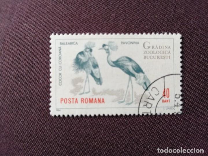 RUMANIA - VALOR FACIAL 40 BANI - AÑO 1964 - ZOOLÓGICO BUCAREST - GRULLA, COCOR CU COROANÁ - CON GOMA (Sellos - Extranjero - Europa - Bulgaria)