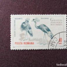 Sellos: RUMANIA - VALOR FACIAL 40 BANI - AÑO 1964 - ZOOLÓGICO BUCAREST - GRULLA, COCOR CU COROANÁ - CON GOMA. Lote 204481531