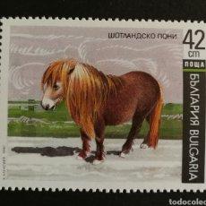 Sellos: BULGARIA, PONEY DE SHETLAND 1991 MNH (FOTOGRAFÍA REAL). Lote 208091991