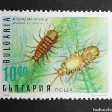 Sellos: BULGARIA, CRUSTÁCEOS, ASELLUS AQUATICUS 1996 MNG (FOTOGRAFÍA REAL). Lote 208093600