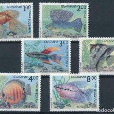 Sellos: BULGARIA 1993 IVERT 3506/11 *** FAUNA MARINA - PECES. Lote 212780992