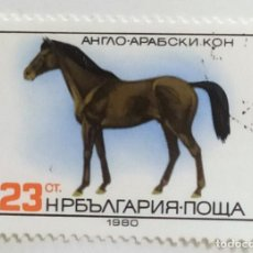 Sellos: SELLO DE BULGARIA 23 CT - 1980 - CABALLOS - USADO SIN SEÑAL DE FIJASELLOS. Lote 254046190