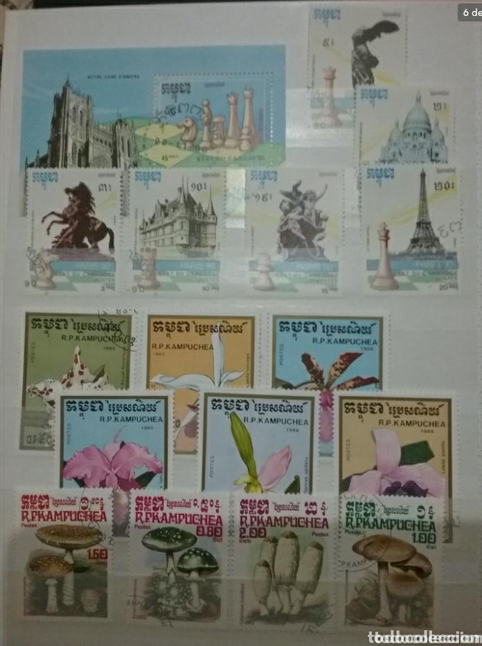 Sellos: Clasificador (170 x 220 cm)12Fotos\Sellos R. Kampuchea (Camboya)mtdos/espacio/fauna/flora/deporte/ - Foto 6 - 134955815