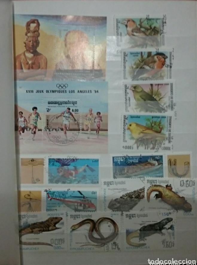 Sellos: Clasificador (170 x 220 cm)12Fotos\Sellos R. Kampuchea (Camboya)mtdos/espacio/fauna/flora/deporte/ - Foto 11 - 134955815