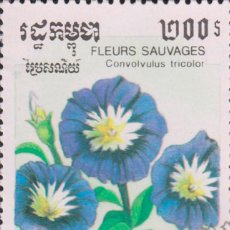 Sellos: SELLO CAMBOYA CAMBODGE USADO FILATELIA CORREOS. Lote 183813681