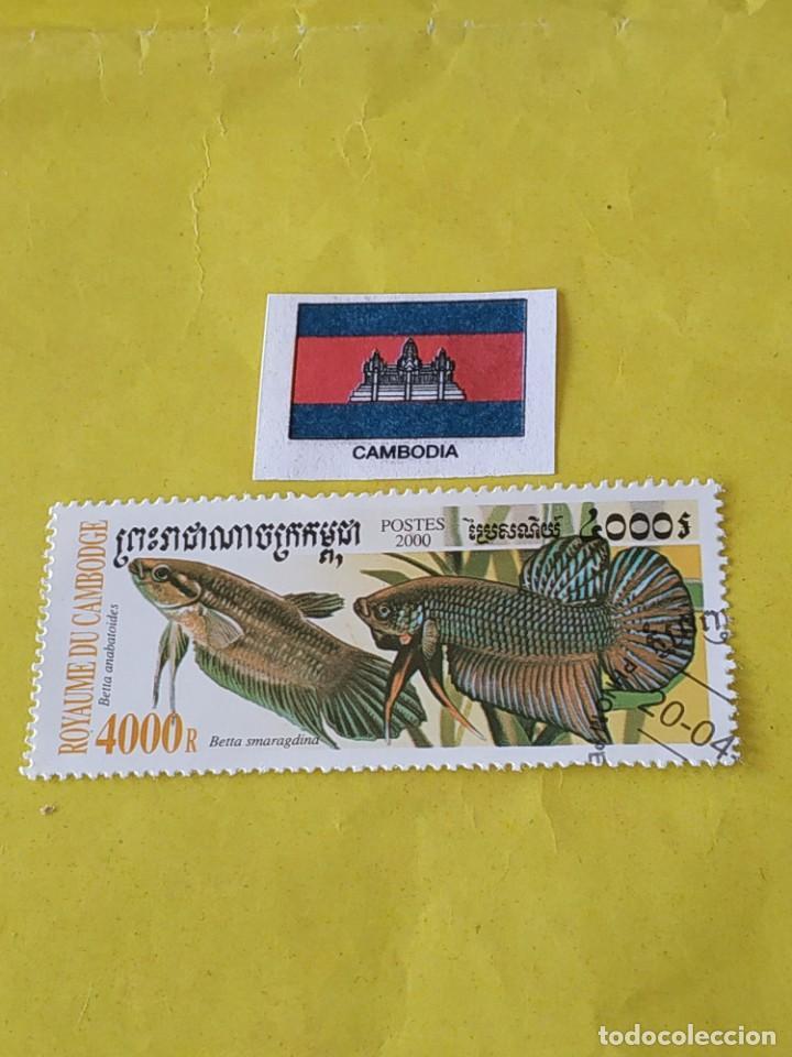 CAMBOYA (D4) - 1 SELLO CIRCULADO (Sellos - Extranjero - Asia - Camboya)