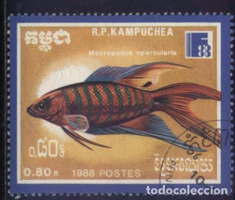 S-5795- CAMBOYA. R.P. KAMPUCHEA. PECES (Sellos - Extranjero - Asia - Camboya)