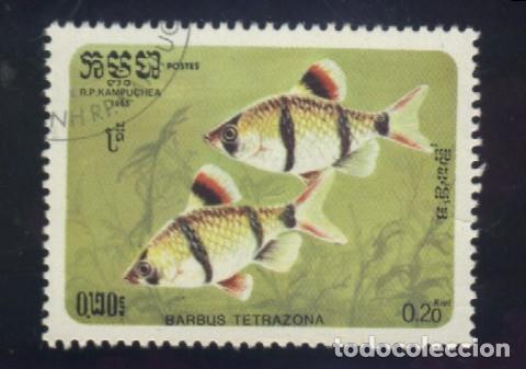 S-5798- CAMBOYA. R.P. KAMPUCHEA. PECES (Sellos - Extranjero - Asia - Camboya)