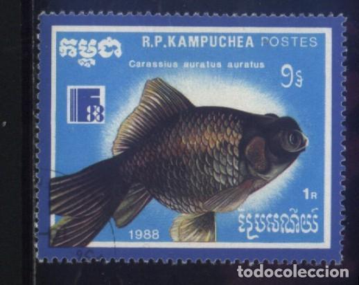 S-5832- CAMBOYA. R.P. KAMPUCHEA. PECES. (Sellos - Extranjero - Asia - Camboya)