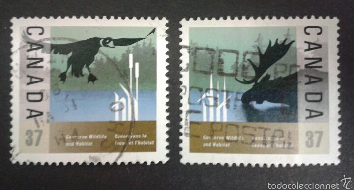 SELLOS DE CANADÁ. FAUNA. YVERT 1036/7. SERIE COMPLETA USADA. (Sellos - Extranjero - América - Canadá)