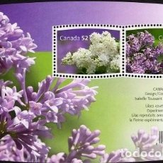 Sellos: [CF7321] CANADÁ 2007, HB FLORES. LILAS. (MNH). Lote 82059868