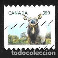Sellos: CANADÁ. Lote 96036183