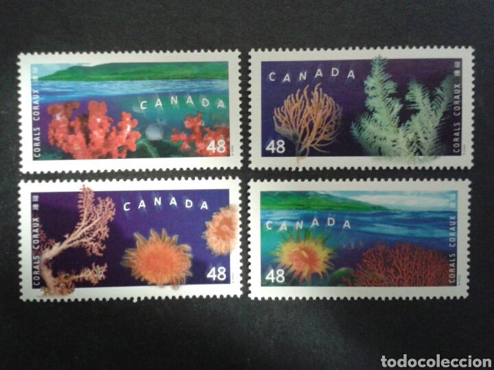 CANADÁ. YVERT 1932/5. SERIE COMPLETA SIN CHARNELA. FAUNA. CORALES (Sellos - Extranjero - América - Canadá)