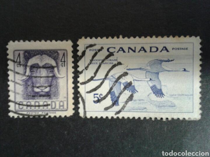 CANADÁ. YVERT 279/80. SERIE COMPLETA USADA. FAUNA. (Sellos - Extranjero - América - Canadá)