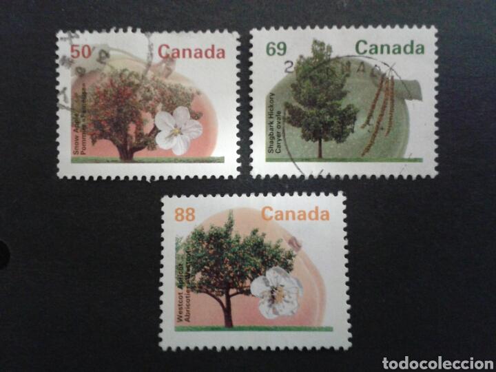 CANADÁ. YVERT 1356/8. SERIE COMPLETA USADA. FLORA. ÁRBOLES. (Sellos - Extranjero - América - Canadá)