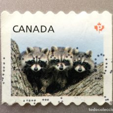 Sellos: CANADA. MAPACHES. Lote 151695796