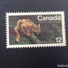 Sellos: CANADA Nº YVERT 624*** AÑO 1977. FAUNA EN VIAS DE EXTINCION, PANTERA DE AMERICA. Lote 155707146