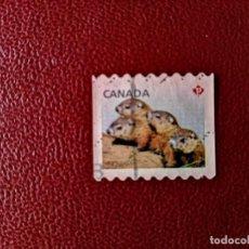 Sellos: CANADA P - FAUNA. Lote 214392341